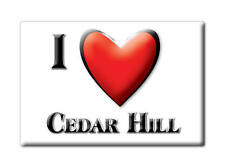 SOUVENIR USA - TEXAS FRIDGE MAGNET AMERICA I LOVE CEDAR HILL (DALLAS COUNTY)