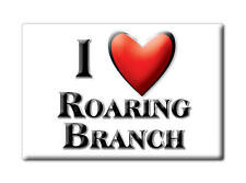 SOUVENIR USA - PENNSYLVANIA FRIDGE MAGNET I LOVE ROARING BRANCH (TIOGA COUNTY)