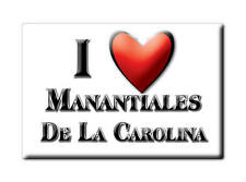 MEXICO SOUVENIR FRIDGE MAGNET IMAN DE NEVERA I LOVE MANANTIALES DE LA CAROLINA