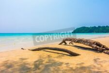 "Bild auf Forex: ""Beautiful tropical ocean or sea and sand beach on island wi..."""