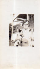 DY320 Photographie vintage photo snapshot chien dog chat cat