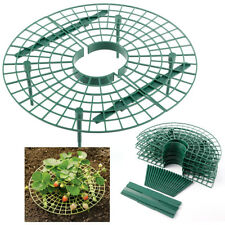Strawberry Plant Support Holder Rack Stand Shelf Fruit Worm Protection Garden