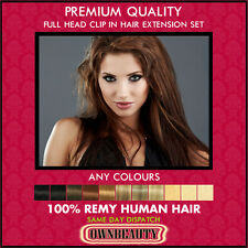 Clip in Remy 100% Human Hair Extensions Full Head