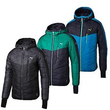 Puma Active Norway Jacket wattierte Herren Winterjacke Jacke Outdoorjacke Men