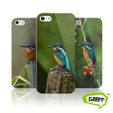 Kingfisher iPhone 5 Case iPhone 5s Cover