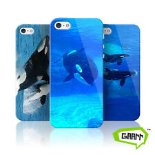 Killer Whale Case For Apple iPhone 5/5s Orca Animal Hard Shell Protective Cover