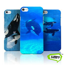 Killer Whale iPhone 7 Case