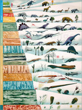Póster, lienzo o cuadro en metacrilato Dinosaurs and geological history