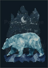 Póster, lienzo o cuadro en metacrilato The Great Bear - Tracie Andrews