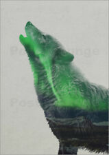 Poster / Toile / Tableau verre acrylique Howling in the Aurora Borealis - A. Lie