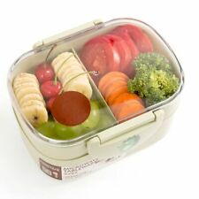 Lunch Box Plastic Microwave Food Container Double Layer Portable Bento Organizer