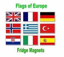 Flag of Europe Fridge Magnets FREE POSTAGE