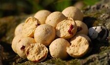 (9,95€/1kg) Carp Killers Boilies White Indian 1kg Karpfenköder