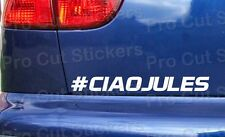 # CIAO JULES Bianchi rip memorial tribute bumper window stickers decals ref: 13