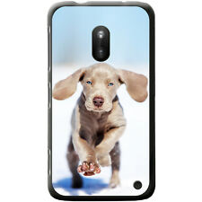 Weimaraner Vorstehhund Grey Ghost Dog Hard Case For Nokia Lumia 620