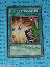 Harpies' Hunting Ground SD8-EN024 Common Yu-Gi-Oh Card Mint 1st Edition New