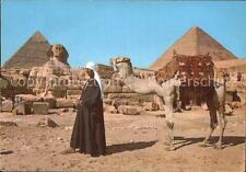 72491077 Kamele Giza Sphinx Pyramids of Cheops and Chephren Tiere