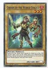 Chosen by the World Chalice COTD-EN019 Common Yu-Gi-Oh Card Single/Playset 1st