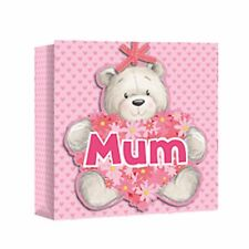 Eurowrap Mothers Day Bear Square Gift Bags (Pack of 12) (SG9844)