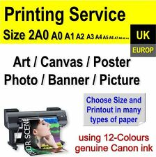 Your Photos Posters Canvas Art Picture Banner Large Format Pro Printing Service