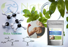 Beta Alanine - muscle size improve workout power strength - delay muscle fatigue