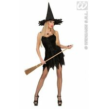 Ladies Womens Witch Dress Dreamgirlz Costume Outfit for Halloween Fancy Dress