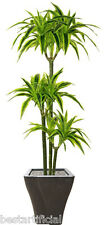 Best Artificial 1.5m 150cm Dracaena Dragon Árbol Planta Tropical Invernadero