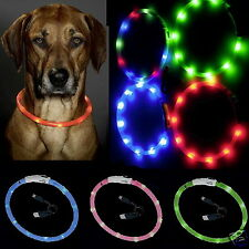 LED ANILLO LUMINOSO VISIO LIGHT COLLAR CON LUCES TUBO DE LUZ PARA PERRO k64904