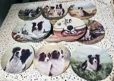 Royal Worcester The Border Collie Plates 11 to Choose From use Drop Down Menu