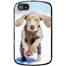 Weimaraner Vorstehhund Grey Ghost Dog Hard Case For Blackberry Samoa 9720