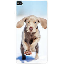 Weimaraner Vorstehhund Grey Ghost Dog Hard Case For Huawei P8