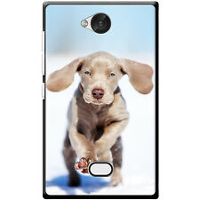 Weimaraner Vorstehhund Grey Ghost Dog Hard Case For Nokia Asha 503