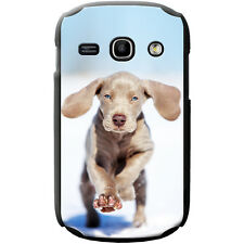 Weimaraner Vorstehhund Grey Ghost Dog Hard Case For Samsung Fame (S6810)