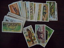 Brooke Bond Tea Cards - Various Sets to Choose From
