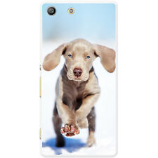 Weimaraner Vorstehhund Grey Ghost Dog Hard Case For Sony Xperia M5