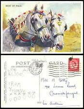 Horse Pony 2 Horses Ponies, Best of Pals M. Gear Artist Signed 1961 Old Postcard