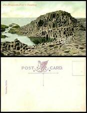 Ireland The Honeycomb Giant's Causeway Co Antrim Birds Old Colour Irish Postcard