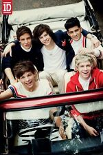 New One Direction The Boys From 1D! Poster