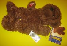 New UNSTUFFED Build-A-Bear GRIZZLY BEAR TEDDY 12in Plush