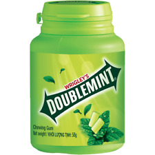 Wrigley's doublemint chewing gum cool papermint flavour in Botle 58g new