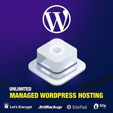 1 Years Managed WP Unlimited Website Web Hosting Reliable Registered UK Company