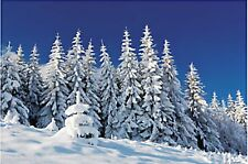 9 FOOT Frozen Snow Covered Mountain Trees Wall Mural Scene Setter Photo Backdrop