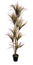 Best Artificial 6ft 170cm Red Dracaena Dragon Tree Plant Tropical Conservatory