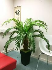 1.4M Artificial Phoenix Palm Tree in Tubus Gloss White Pot Large Office Plant