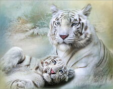 Poster / Leinwandbild White Tiger - Trudi Simmonds