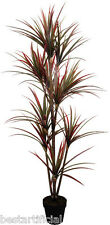 Best Artificial 1,8 M 170cm Rojo Dracaena Dragon Árbol Planta Tropical