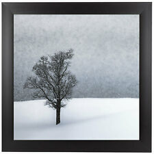 East Urban Home Lonely Tree Idyllic Winter Landscape Framed Photographic Print