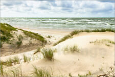 Poster, stampa su tela o vetro acrilico Sand dunes on the Baltic sea