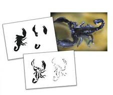 Step by Step Stencil AS-017 Scorpion ~ UMR Airbrush Schablone