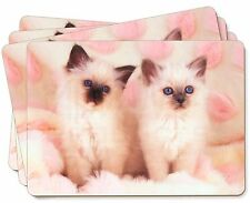 Birman Cat Kittens Picture Placemats in Gift Box, AC-21P